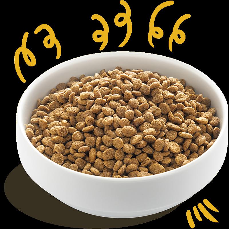 PIMP MY PET Alimenti per cani Tacchino BIO
